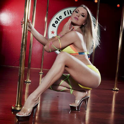Stripper pole image 2